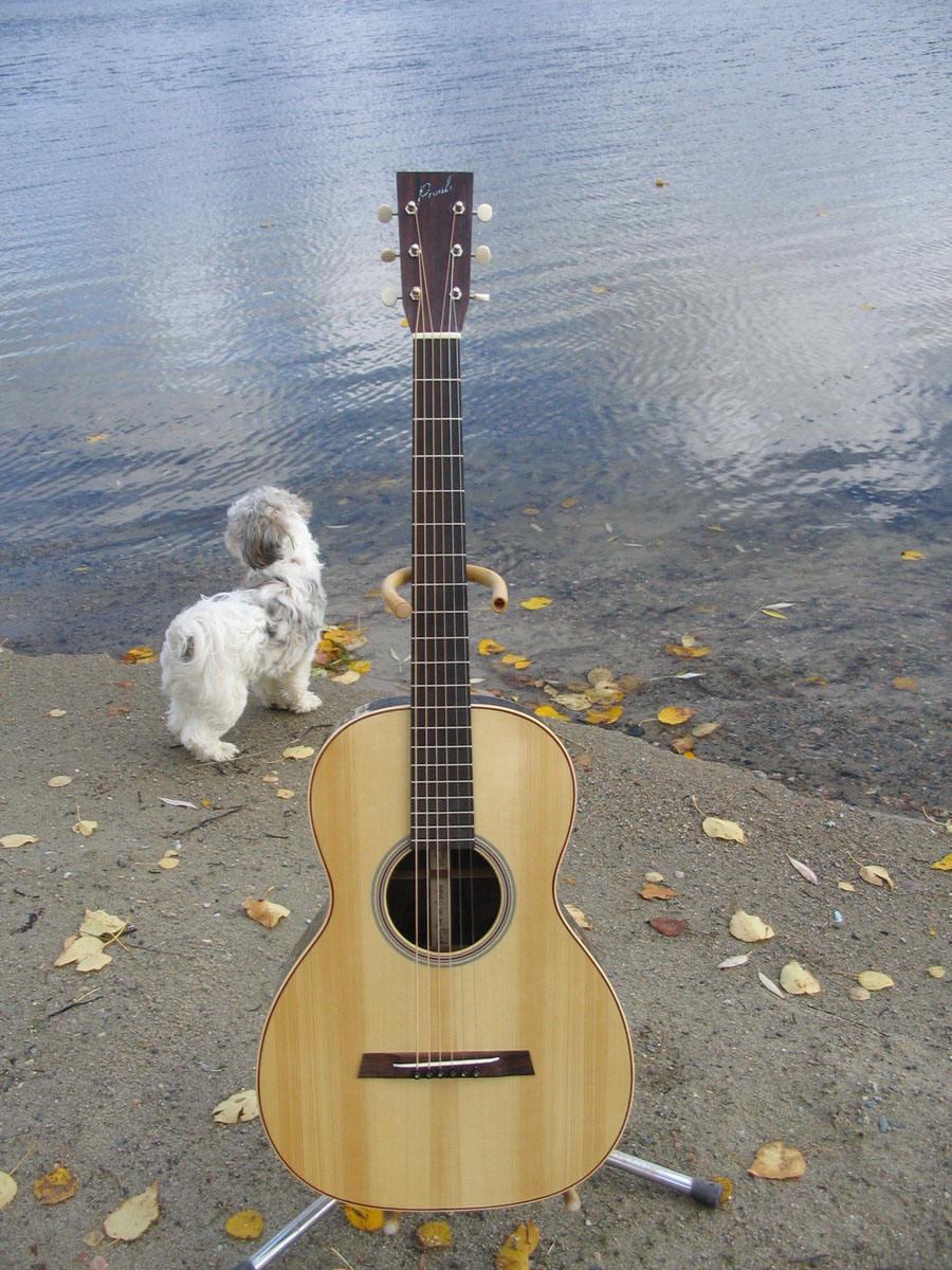 IMG_2226-Guitar-Luthier-LuthierDB-Image-18